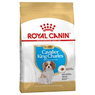 3x1,5kg Cavalier King Charles Puppy Royal Canin Breed Hundefoder
